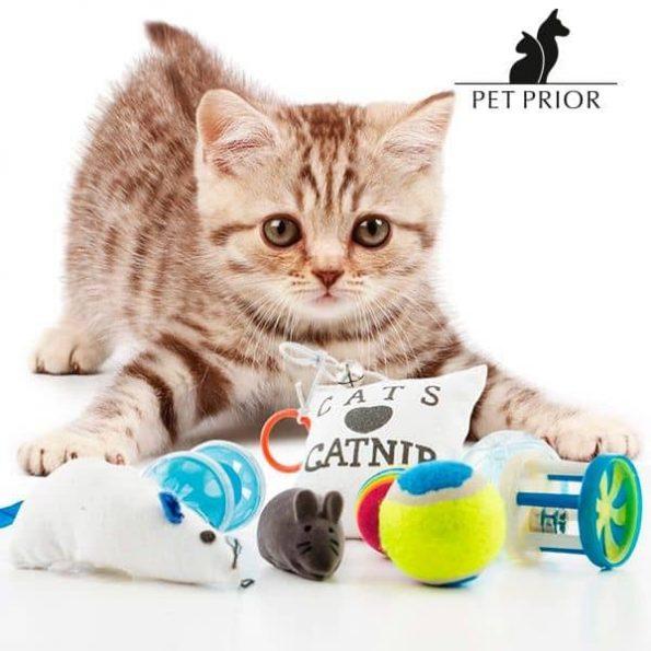 Играчки за Котки