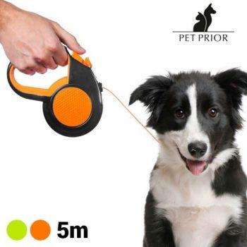 разтегателна каишка за куче