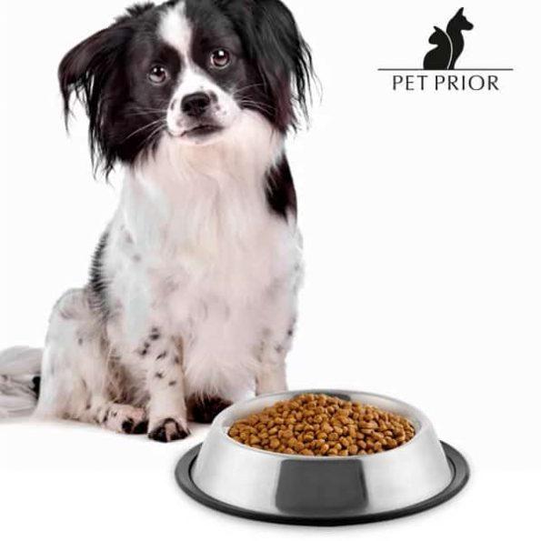 Храника за Куче Pet Prior
